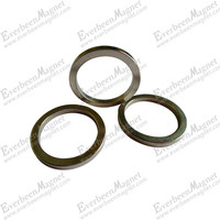 neodymium ring magnets for motor
