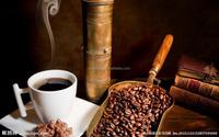 Mini coffee roaster, coffee roasting machine for home use