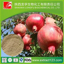 Manufacturer Supply Pomegranate Leaf Extract Powder