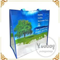 China PP Woven Bag, PP Woven Shopping Bag, bopp laminated pp woven bag