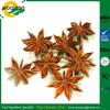 /p-detail/Planta-natural-pura-extrae-an%C3%ADs-estrellado-extracto-de-la-salud-300006425007.html