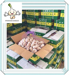 New Best Garlic / Alho / Garlic Braid 2015 crop
