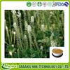 Natural Cimicifuga Racemosa Root Extract/ Black Cohosh Extract