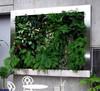 Hot sale art plant wall flower garden Green artificial Wall/ vivid dec artificial plant wall