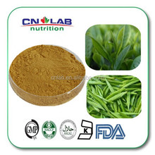 Pure Bio Green Tea Extract Powder Benefits with Competitive Price