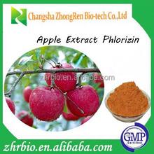 Hot sale high quality Apple Extract Phlorizin