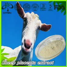 Sheep placenta extract/sheep placenta powder