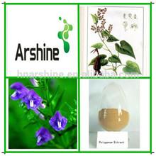 Medicina de la hierba natural Fallopia multiflora