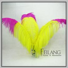 Wedding Decoration Ostrich Feathers
