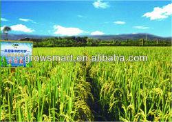 Liquid NPK foliar spray fertilizer for vegetable