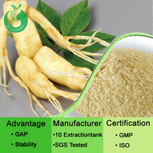 Ginseng root extract/korean ginseng extract/panax ginseng extract