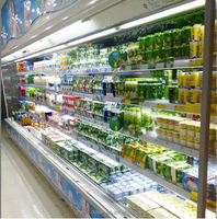 Professionally Provide All Kinds Of Commercial Refrigeration For Big Supermarket