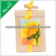 Kraft Paper Bag Planter,With Silk Ribbon,Carry Paper Bag