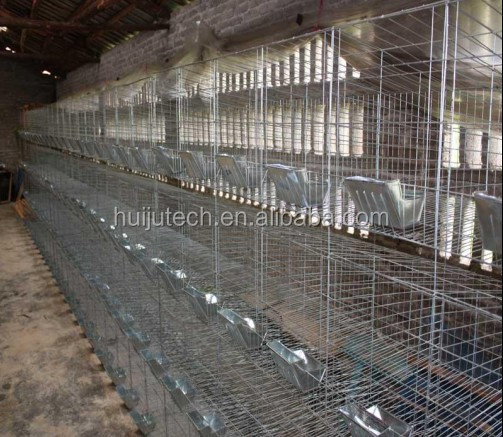 Used Gym Equipment In Zimbabwe: 24pcs Commercial Rabbit Cage Hj-rc24