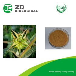 High purity Tribulus terrestris fruit extract(Saponin:90%)