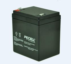 6V 4.0Ah VRLA battery