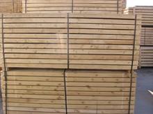 spruce white wood
