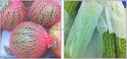 EPE/PE plastic onion/fruit mesh bag