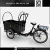 cargo electric vehicle front load trike BRI-C01 scooter 300cc