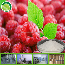 Manufacturer price raspberry fruit extracts