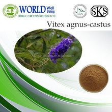 Chasteberry Seed Extract/Chasteberry Fruit Extract/Vitex agnus Castus Chasteberry Extract