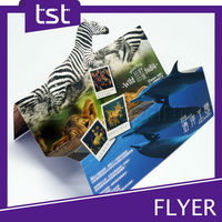 Custom DeSigN Poster with Full Printing Solution