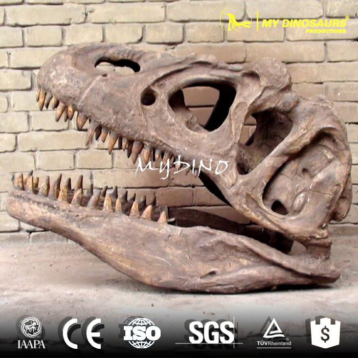 t rex skull.jpg