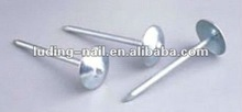 """2.5""""china roofing nails with fixing plastic tile"""