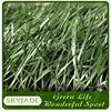 Football Ground Fake Grass