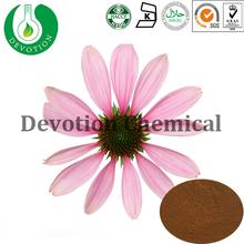 Manufacturer supply Pure Natural Echinacea purpurea Extract 4% Chicoric Acid Echinacea Extract