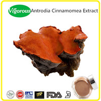 GMP manufacturer 10-50% Polysaccharides powder Antrodia cinnamomea extract