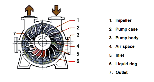 Centrifugal Pump Structure Centrifugal Pump Impeller Size