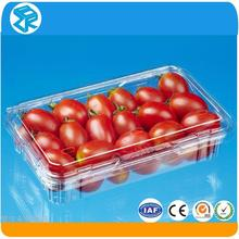 Hot sale fruit cherry tomato packaging