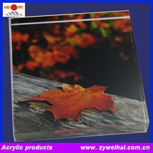 Printed Picture Acrylic Block