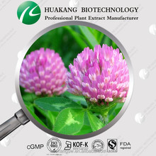 GMP Supplier Women Health Product 8%- 40% isoflavones red clover extract