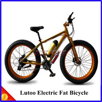 New model High Quality Lutoo Electric with kettle shell lithium battery