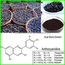 Berry Extract of Acai