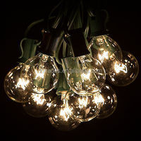 UL Listed Green 25 Clear Bulbs Commercial Outdoor G40 Globe String Lights