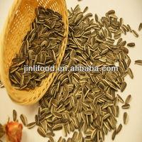 American Type Sunflower Seeds Hot Sale