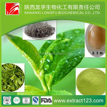 Health food decaffeinated green tea extract