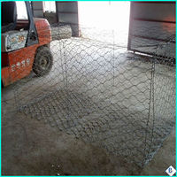 pvc coated galvanized hexagonal wire mesh