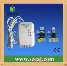 Standalone wall mounted toxic gas detector