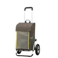 To give mom buy food 600D polyester trolley shopping bag