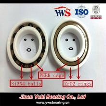 Full Zirconia ZrO2 rings Si3N4 ZrO2 balls PEEK PTFE cage ceramic bearing