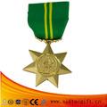 Emblema militar del metal de encargo para la promoción