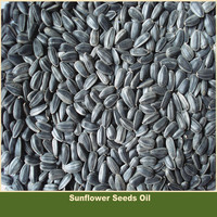 Oil Extraction Sunflower Seeds
