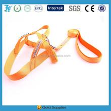 Easy Walker Training orange Harness and leash