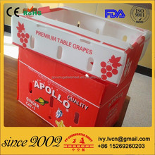 Folding corrugated plastic reusable box for fruit and vegetable packing
