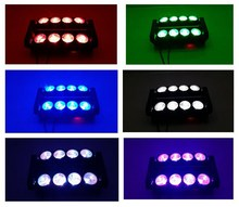 Housing dmx512 rotation 8x10w stage spider led moving head light