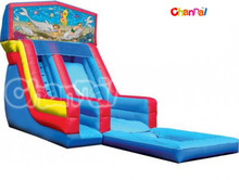 Modular Large Inflatable Wet Dry Slide with Pool